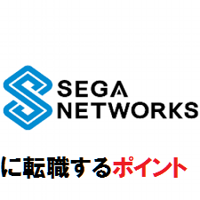 セガネットワークスの企業ロゴ
