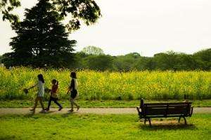 散歩する子供たち